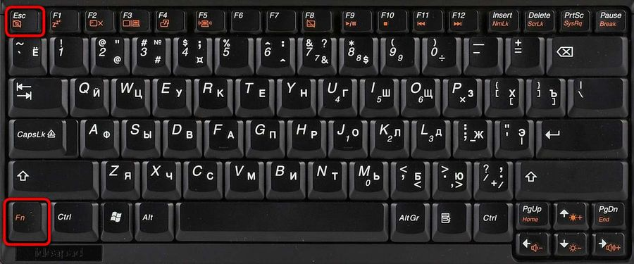 Клавиши Fn и Esc